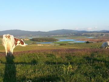panorama sul lago cecita visto dalla fattoria biò